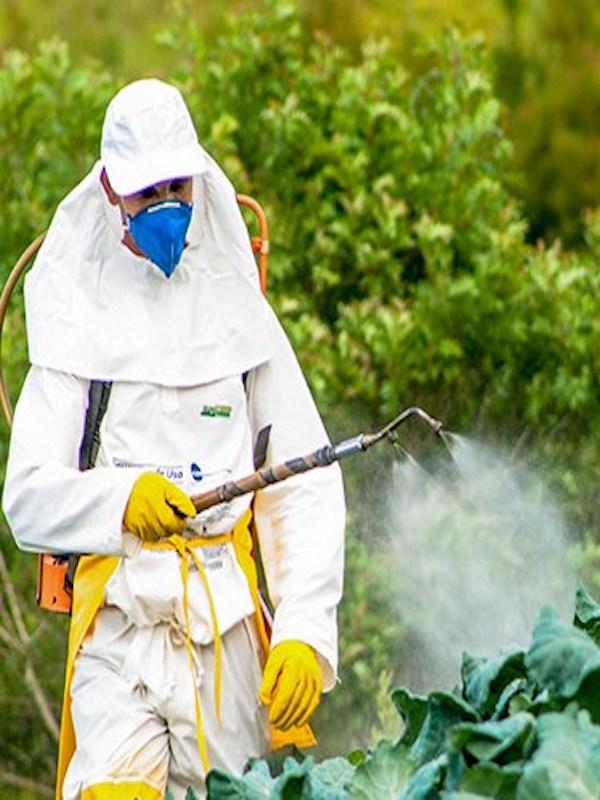 Casi 150 pesticidas podrían estar en nuestra alimentación