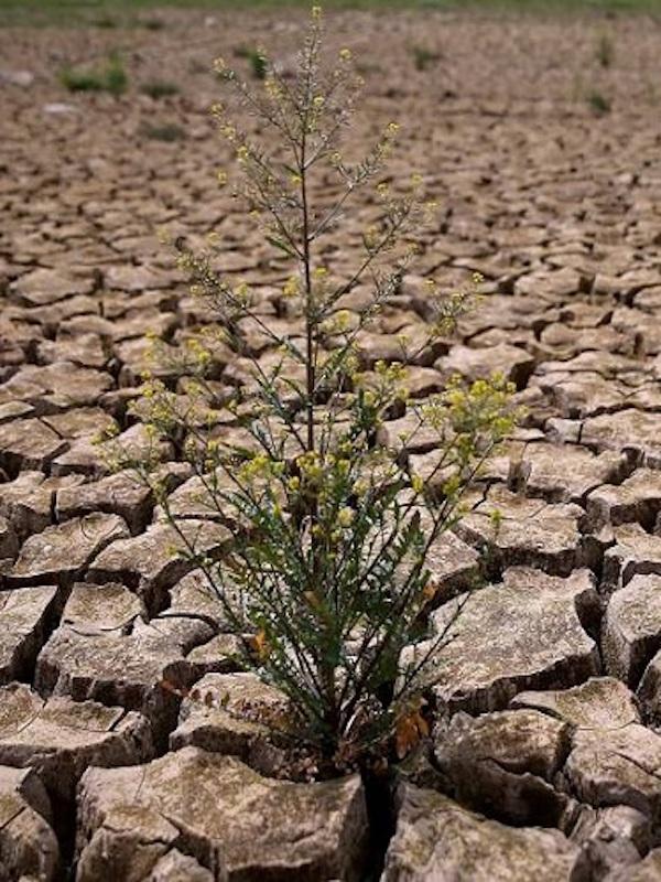 Un nuevo impulso para la adaptación al cambio climático del urbanismo, en marcha con el PNACC 2021-2030