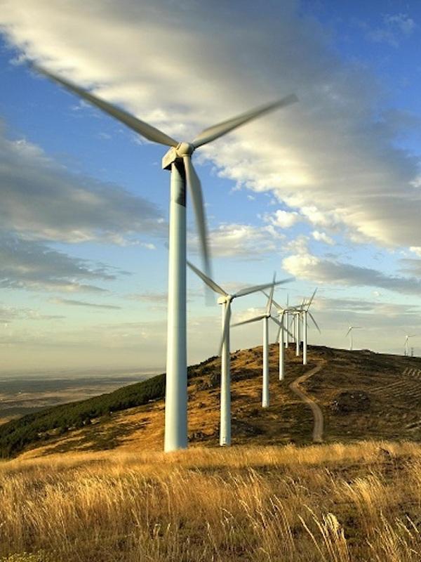 Andalucía prestará un servicio de apoyo técnico a promotores para aprovechar ayudas estatales en energías renovables