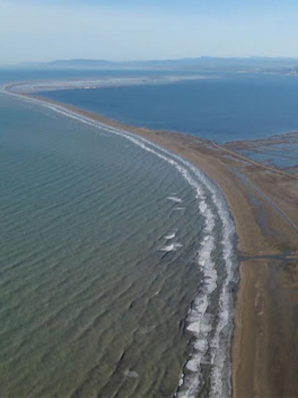 Exigen soluciones basadas en la naturaleza para conservar el Trabucador del Delta del Ebro