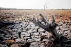 Más ciencia, urgencia y ambición en la Ley de Cambio Climático y Transición Energética