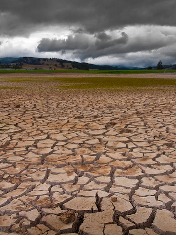 Calentamiento global. Balance parcial en España de 2020: hasta ahora el año más cálido
