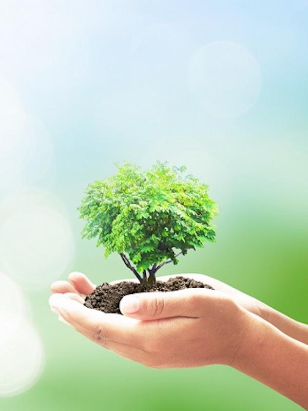 Fundación Biodiversidad. Impulsamos la custodia del territorio como herramienta clave para la conservación de la biodiversidad, generar empleo y fijar población en el medio rural