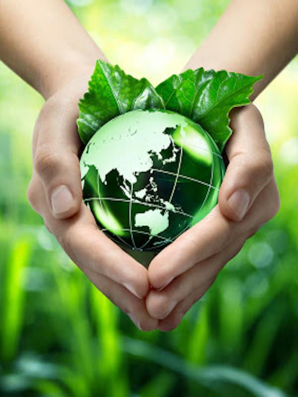 Fundación Biodiversidad. Más de 10 millones de euros para la creación de empleo verde