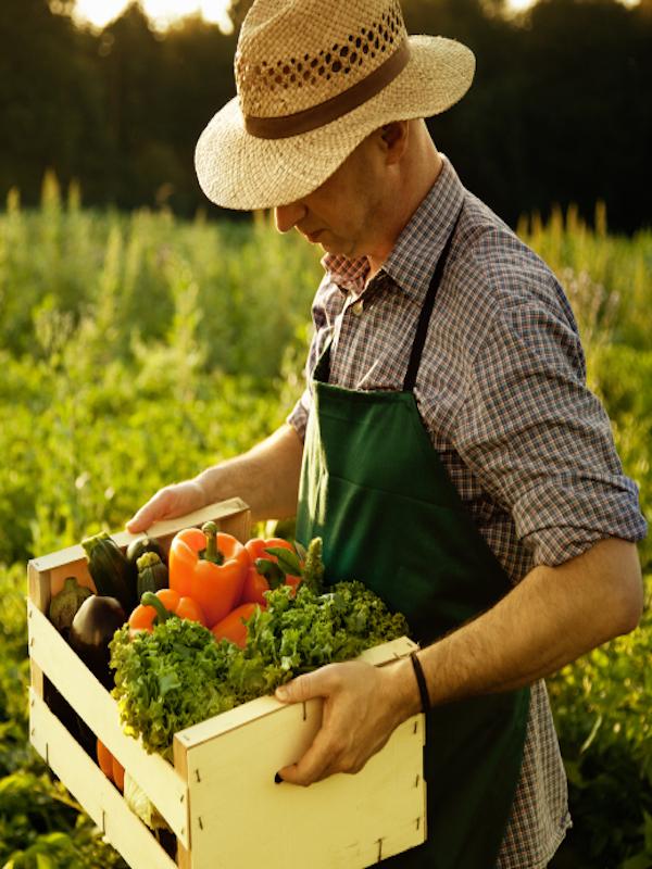 Fruit Attraction acoge desde hoy frutas y verduras ecológicas