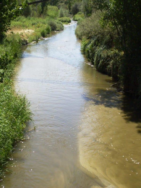 La Confederación Hidrográfica del Tajo inicia la contratación de los trabajos para la retirada de los residuos presentes en el cauce y zonas aledañas del río Guadarrama