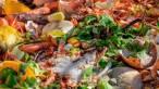 La gran distribución reduce en un 45% su índice de desperdicio alimentario