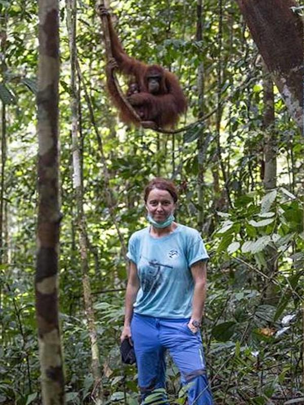 Fundación BBVA premia a la Fundación Quebrantahuesos, Fundación IAR y a Antonio Cerrillo por conservar la biodiversidad