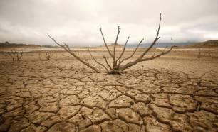 Cuarenta especialistas hablan sobre el calentamiento global