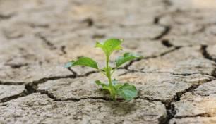 Cantabria totalmente involucrada con los compromisos de Europa sobre biodiversidad y cambio climático