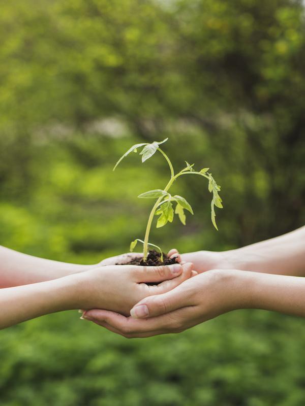 EOI. Nuevas profesiones para un nuevo mundo y la transición ecológica