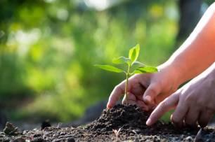 Extremadura impulsa la transición ecológica