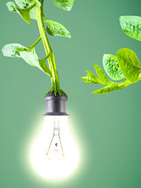 Tecnología Verde para extraer CO2 directamente del aire