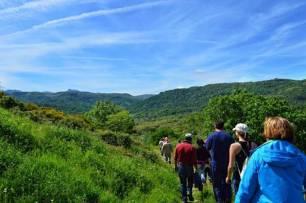 Un nuevo sendero micológico invita a disfrutar de la naturaleza entre Cepeda, Madroñal y Herguijuela (Salamanca)