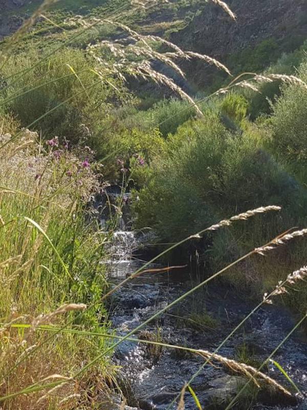 Defendamos el agua como un bien público frente al negocio del agua embotellada