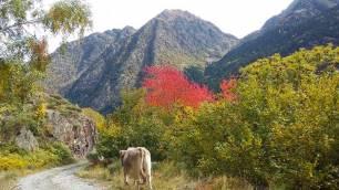 La temperatura en Catalunya subirá entre 2 y 3ºC en 2050