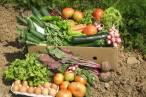 El programa de TVE 'Aquí La Tierra' analiza los productos ecológicos de Navarra