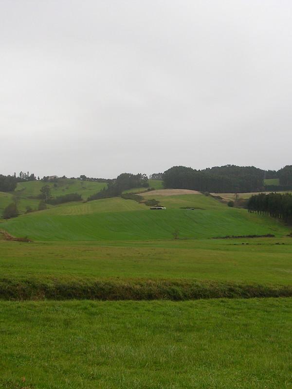 Asturias. Decimos No a la subestación de Gozón por su elevado impacto