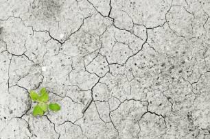 Europa da un impulso a ley climática