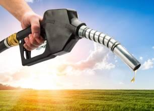Biodiesel muy económico a base de restos de comida y basura