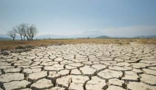 Unidas Podemos pide el reconocimiento de la figura del afectado por el 'calentamiento glonal'