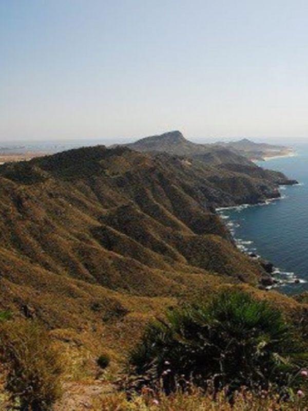 Murcia, burla al Consejo Asesor Regional de Medio Ambiente (CARMA)