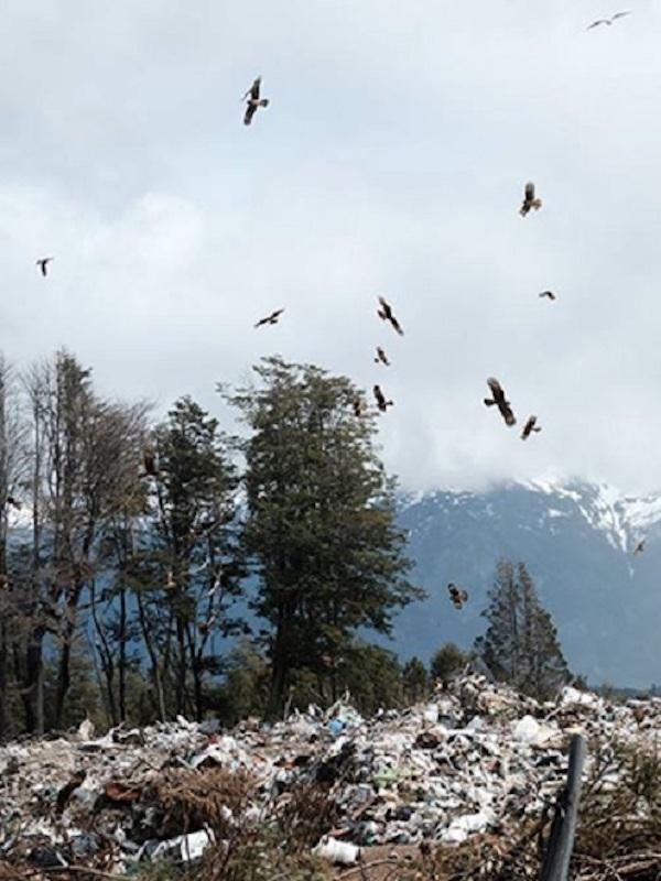 Mejorando la gestión de residuos, y biodiversidad