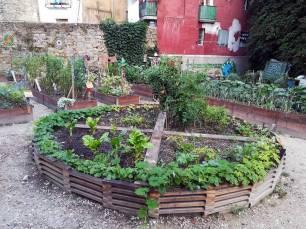 Huertas urbanas en Etxabakoitz