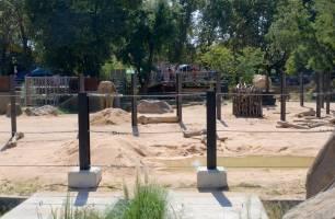 La dirección del zoo de Barcelona debería irse a casa por 'malas praxis'