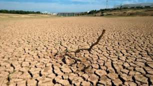 Castilla – La Mancha cuenta con una nueva guía divulgativa en materia de buenas prácticas frente al calentamiento global
