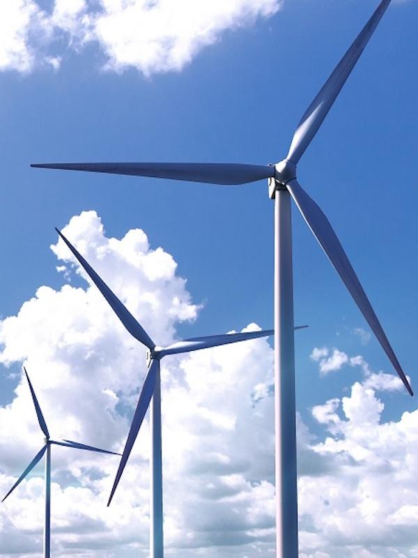 El enfoque ambiental de los Presupuestos Generales del Estado para la recuperación son 'verdes'