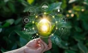 Tecnología Verde crea un recubrimiento antibacteriano y biodegradable para alimentos