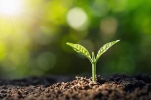 España. Transición Ecológica se llevará el 40% aprox. de los fondos europeos de 2021