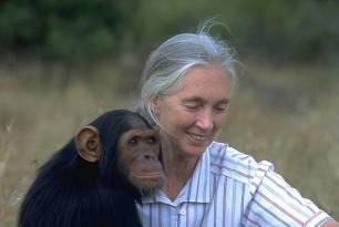 Jane Goodall galardonada por su lucha y defensa del medio ambiente