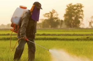 Europa liquida el 'MANCOZEB' un pesticida cancerígeno