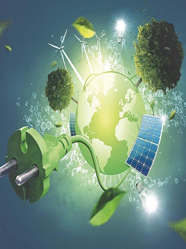 Bankia y Fundación Bancaja convocan ayudas por 150.000 euros para proyectos medioambientales y de desarrollo sostenible