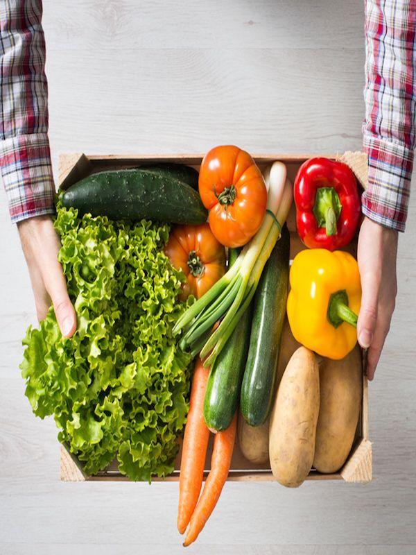 Europa no es amiga de los productos sustitutivos de una dieta natural