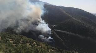 Piden colaboración ciudadana para prevenir incendios forestales en el Parque Natural Sierra de Grazalema