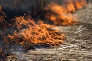 Galicia disminuye el riesgo de incendios forestales provocados por vertederos, áreas recreativas y líneas eléctricas