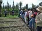 México impulsa la primera escuela agroecológica chinampera