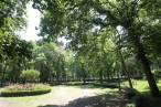 El Ayuntamiento de Pamplona propone descubrir los espacios naturales de la ciudad a través de actividades de ocio