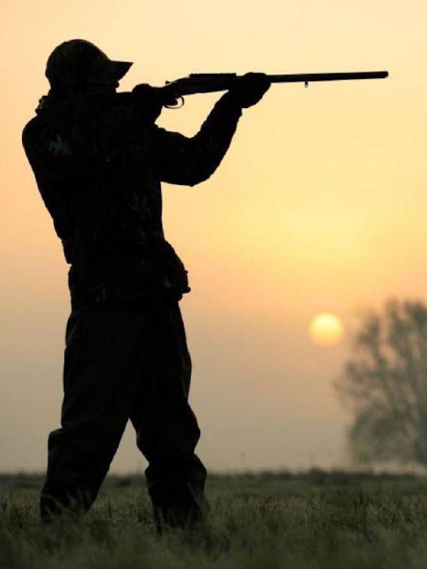 A VOX no le gusta la prohibición de la caza en Parques Nacionales