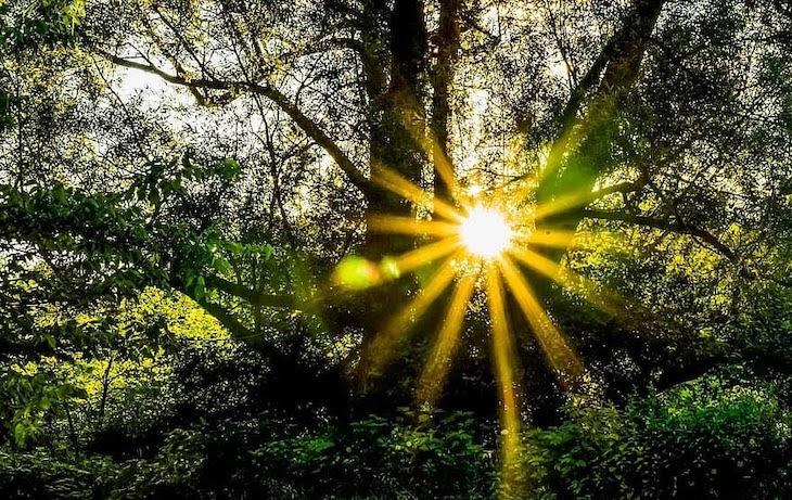 Energías limpias para un mundo sostenible
