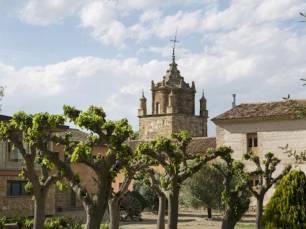 La Diputación de Zaragoza edita un folleto sobre los caminos de Veruela con 12 rutas