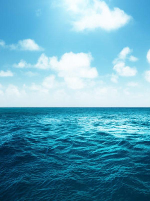 España alcanza el 13% de sus áreas marinas protegidas, aunque el compromiso de país es llegar al 30% en 2030
