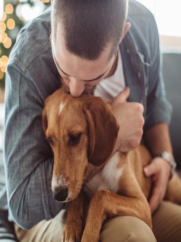 Las mascotas ayudan a controlar el estrés en caso de confinamiento