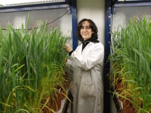 El IRNASA refuerza sus estudios sobre agricultura, ganadería y medio ambiente con cinco nuevos proyectos