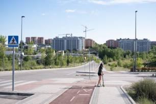 Comunidad de Madrid, los árboles no solucionan los atascos