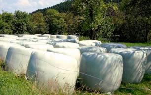Proponen un servicio de recogida para los residuos propios de la zona rural de Gijón