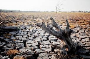 Más de treinta ciudades se movilizan por la justicia climática